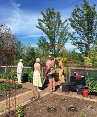 Open Gardens at Larch Cottage Nurseries