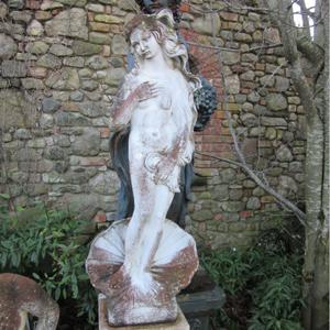 Venus Botticelli ART155