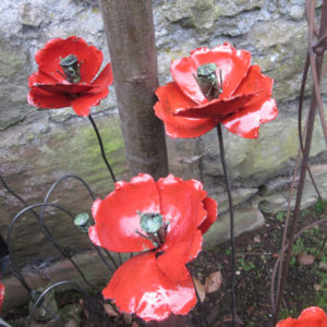Coquelicot Rouge & Bouton
